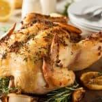 اشهى وصفات طبخات دجاج سهلة وسريعة