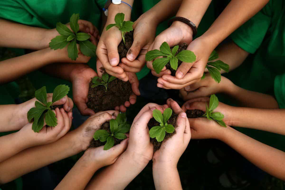 عبارات عن البيئة باسلوب ادبي | مجلة البرونزية
