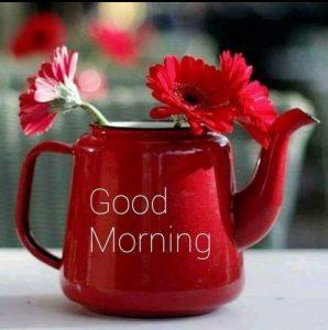 صباح الخير بالأحمر
