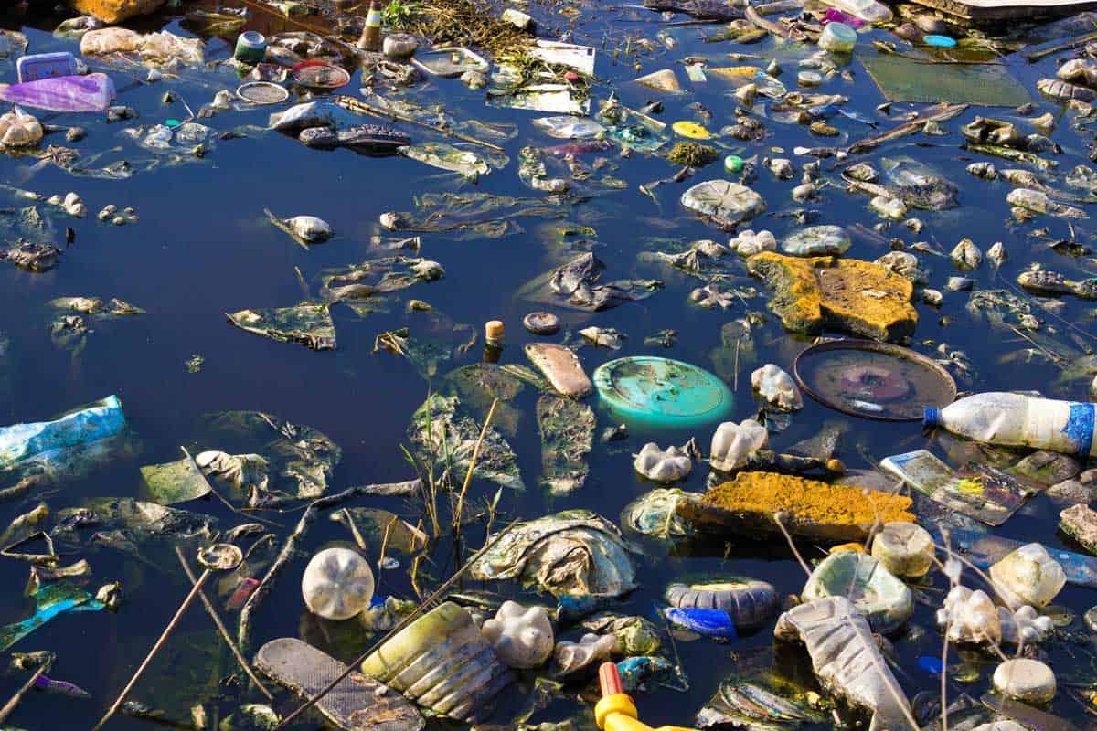 بحث عن تلوث المياه مجلة البرونزية