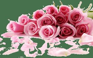 رمزيات زهور ناعمة صور زهور جميلة للواتس