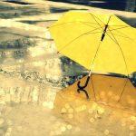 صباح المطر و رائحة المطر