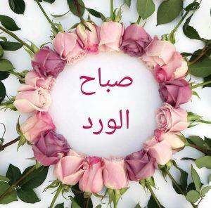 صور صباح الورد جديدة