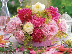 أجمل صور ورود ملونة ورود رومانسية للاه