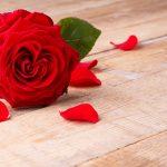 اجمل ورود الحب صور ورد رومانسية