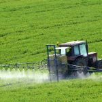 تقرير عن الزراعة في السعودية