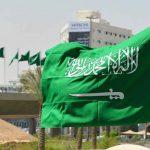 توزيع عدد سكان المملكة العربية السعودية حسب الفئات العمرية