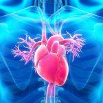 كم نسبة نجاح عملية قسطرة القلب