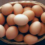 هل البيض يرفع النقرس